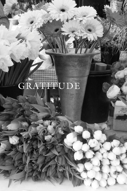 breathe-gratitude.jpg